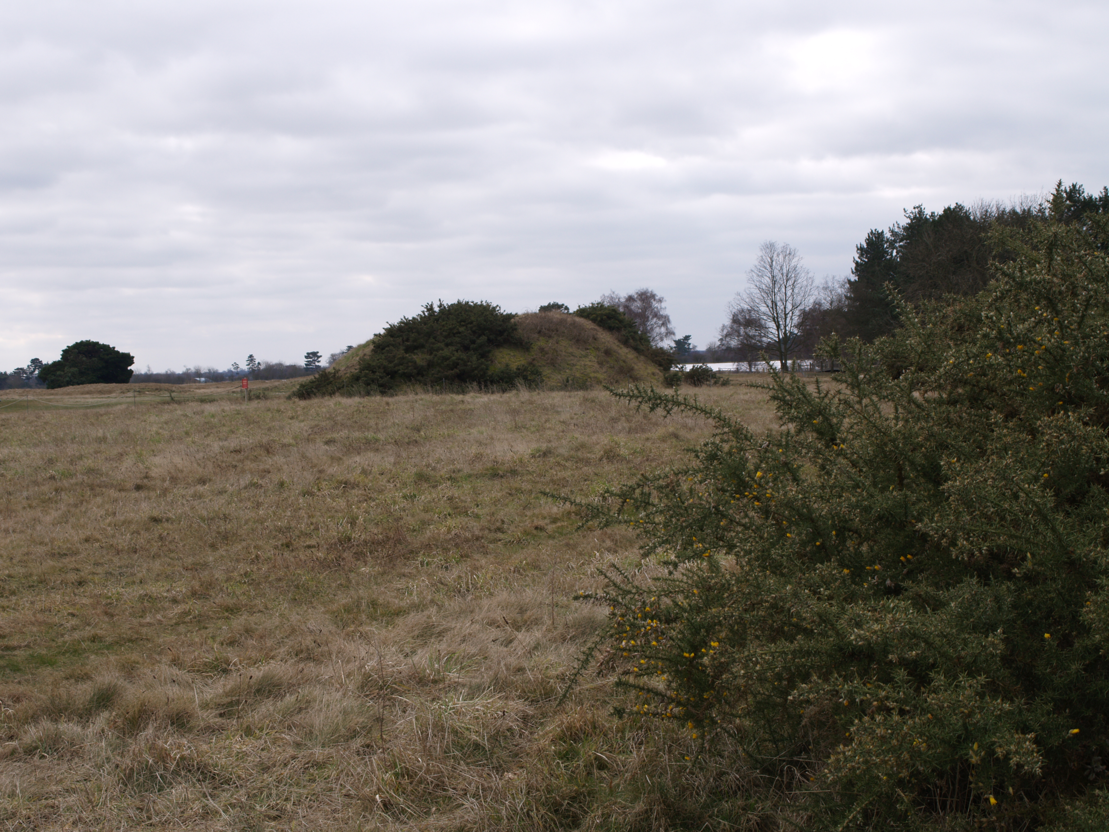 Photos Of Sutton Hoo 2 Woruldhord